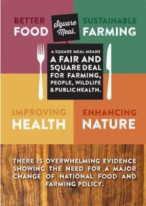 'Square Meal - why we need a new recipe for farming, wildlife, food and public health' is a new report published this week Food Meaning, Square Deal, Benefits Of Organic Food, Food System, Sustainable Food, Public Health, Organic Recipes, New Recipes, Sustainability