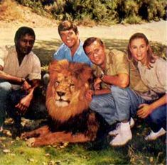 Daktari (1966–1969) ~~ Adventure | Family ~~ A veterinarian and his daughter run an animal study center in Africa. A crossed-eyed lion named Clarence and a chimp named Judy reside with them.