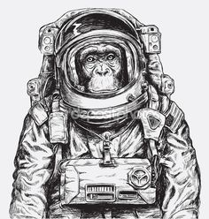 Main dessinée Monkey astronaute Vector — Illustration #123303808