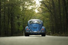 Blue Beetle Car on Gray Asphalt Road Between Green Leaf Trees · Free Stock Photo Beetle Car, Blue Beetle, Asphalt Road, Blue Forest, Dont Look Back, Road Trip Hacks, Car Rental, Old Cars, Free Stock Photos