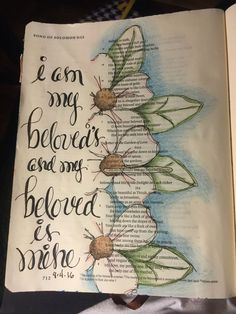 He gives that LOVE that can't be explained. Song of Solomon Sherrie Bronniman-Art Journaling: In My Bible Faith Bible, My Bible, Bible Scriptures, Art Journaling, Bible Study Journal, Scripture Journal, Journal Art, Bible Drawing, Bible Doodling
