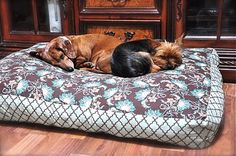 DIY Pet Beds. Must try this! I bet my cat would LOVE this