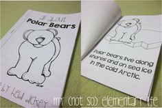 Polar Bear Reader...a reader that helps students learn about polar bears...just a small part of a polar bear unit and craft pack