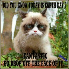 Another Grumpy Cat meme by the other Grumpy Kat 2016 Earth Day