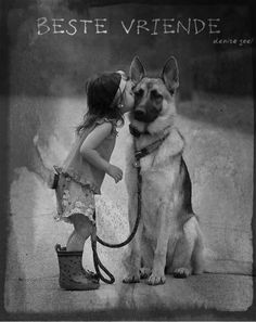 Follow vir nog afrikaanse woorde, liedjies, se goed en bybelversies =) F Movies, Buy Pets, Man In Love, Dog Photos, Cute Baby Animals, Puppy Love, Cute Babies, Husky, Dog Cat