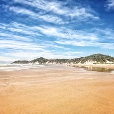 White Lions, Ocean Luxury, and Family Fun – SA's hidden gem Wild Coast town has it all at Prana Lodge, Inkwenkwezi and Crawfords Beach Lodge Game Reserve, Biomes, Most Romantic, Cape Town, South Africa, Coastal, Ocean, Sunset, Beaches