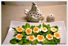 Zdjęcie: Kwitnące jajeczka.