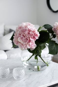 European Home Decor Home Flowers, Fresh Flowers, Beautiful Flowers, Floral Flowers, Hortensia Hydrangea, Hydrangeas, Pink Hydrangea, Rosa Rose, European Home Decor