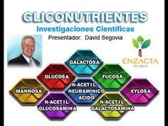 ENZACTA - GLICONUTRIENTES INVESTIGACIONES CIENTIFICAS - DAVID SEGOVI ( Spanish) www.shelitozamora.enzactaishop.com