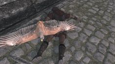 Когда убил птичку вместе со стражником. When you killed the bird with the guardian. Game: The Elder Scrolls V: Skyrim.