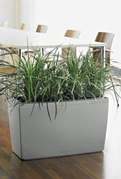 Strakke kunstplanten in moderne plantenbakken kunstplanten pinterest - Decoratie kantoor ...
