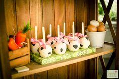 Festa Fazendinha!!  Maçãs com cobertura de chocolate