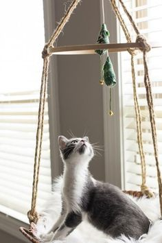 12 Adorable DIYs for Cats + Cat Lovers These 12 DIY ideas are the ultimate thing for your favorite kitty. Easy to make and far more fun than storebought options. Diy Cat Toys, Diy Cat Hammock, Diy Cat Bed, Cat Hacks, Cat Diys, Cat Playground, Cat Room, Ideias Diy, Cat Accessories