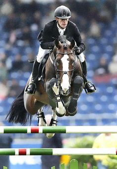 - Art Of Equitation Show Jumping Horses, Show Horses, Dressage, Jumping Pictures, English Riding, Hunter Jumper, Horseback Riding, Horse Riding, Riding Helmets