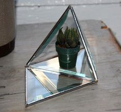 """4"""" Good Fortune Pyramid Vivarium on Uncovet.com (Although I don't know how much...)"""