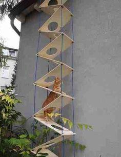 . #CatTree