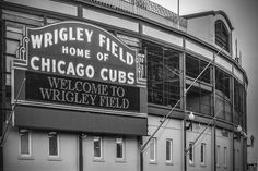 Chicago Cubs Canvas Wrigley Field Canvas Chicago by GuzGallery