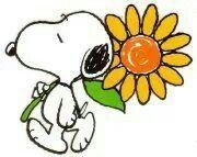 Snoopy and a flower ...does it get any better?