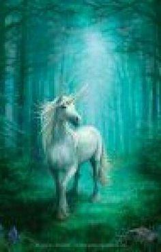 #wattpad #fantasia La radura è in pericolo....uno stregone malvagio minaccia di dominare il mondo magico di Beautyland.. Cory la fatina, Marcus il mago e Micaela la ragazza delfino, si avventurano in vari luoghi alla ricerca di una creatura rara e mai vista.. Riusciranno Cory, Marcus e Micaela a trovare l'unicorno do...