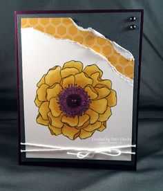 Hello Honey! by PattiLynn - Cards and Paper Crafts at Splitcoaststampers