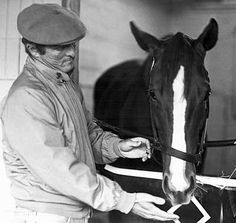 Trainer LeRoy Jolley, a member of racing's Hall of Fame since died Dec. 18 at Albany Medical Center in New York. The lifelong horseman was Saratoga Horse Racing, Faster Horses, Derby Winners, Sport Of Kings, Thoroughbred Horse, Kentucky Derby, Beautiful Horses, Trainers, Race Horses