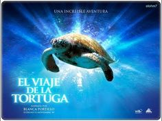 El viaje de la tortuga 2009 Documental - YouTube