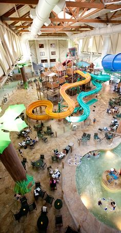 43 Best Experience Great Wolf Lodge Images Great Wolf Lodge