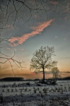 Tramonto invernale ...