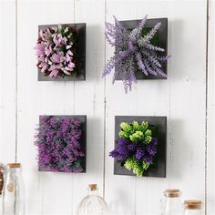 Creative Plants & Succulents in Frames 3d Wall Decor, Flower Wall Decor, Flower Decorations, Inside Garden, Bright Decor, Succulent Wall, Plant Painting, Unique Wall Art, Artificial Plants
