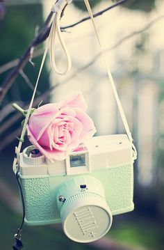 mint/jade + pink . camera+flower