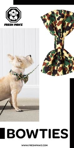 Bowties for dapper dogs of all sizes in fresh, streetwear patterns! Boy Dog Clothes, Easy Shape, Dog Bows, Bowties, Pet Stuff, Pet Accessories, Fine Motor Skills, Dapper, Cute Puppies