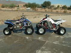 Love quads