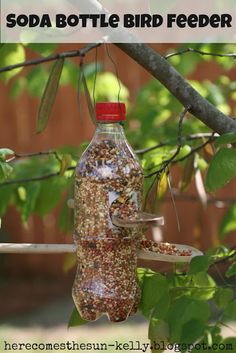 Soda Bottle Bird Feeder Plastic bottle I used a 20 oz. soda bottle} 1 or 2 wooden spoons Sharpie marker Craft knife Scissors Floral wire DIRECTIONS With a sharpie marker, draw a small circle on side of bottle about 4 from the bottom. Cut it out {using a craft knife} and make sure the end of the spoon fits snugly into the hole. Directly opposite this hole, cut a slightly larger hole {using a craft knife and scissors}. The big end of the spoon can rest in the hole.