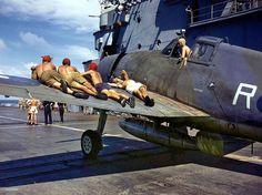 Hellcat | Grumman Hellcat of the Fleet Air Arm on board a ai… | Flickr