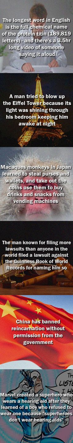 Ten random and interesting facts // funny pictures - funny photos - funny images - funny pics - funny quotes - put on humanity for the last one :) The More You Know, Good To Know, Did You Know, Wtf Fun Facts, Funny Facts, Random Facts, Crazy Facts, Funny Photos, Funny Images