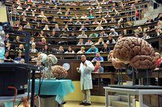 """Ist das Modell der Studiengebühren gescheitert? VON AMORY BURCHARD, TILMANN WARNECKE, PETER MLODOCH, PATRICK GUYTON in """"Die Welt"""": 25. OKTOBER 2012"""