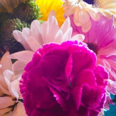 The Adventures of Kathryn: Just a Few Snaps #MothersDay #PrettyFlowers