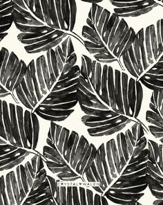 gouache watercolor painted tropical leaves in silhouette