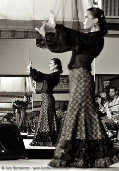 Flamenco: a huge part of Spain's culture. Really enjoyed the Flamenco show we went to in Granada. Line Dance, Dance Art, Ballet Dance, Tango, Shall We Dance, Just Dance, Hula, Samba, Spanish Dance