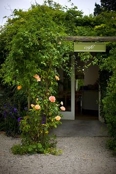 Avoca Garden Cafe, Mount Usher Gardens, Ashford, Wicklow, Ireland. An amazing lunch experience just 30 mins from Dublin
