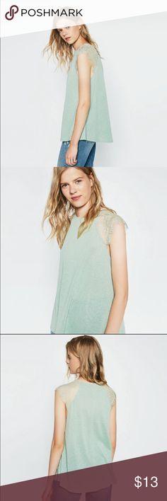 Zara lace tshirt. Small never worn. WOT Zara Tops