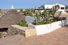 ./galeries/31/hotel-riu-tikida-dunas-agadir-maroc-03.jpg