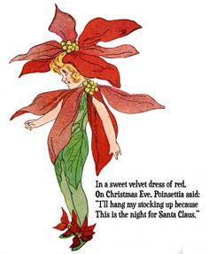Christmas Poinsettia Flower Child Vintage Illustration