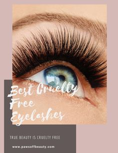 best cruelty free eyelashes you can buy that don't harm animals! Makeup Blog, Makeup Dupes, Cruelty Free Makeup Remover, Hair Dye Brands, Vegan Perfume, Eyelash Brands, Faux Lashes, Vegan Makeup, Gorgeous Eyes