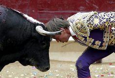 """Le matador espagnol Manuel Diaz Gonzales """"El Cordobes"""" défie un taureau lors d'une corrida à Tafalla (Espagne), le 19 août 2012.   JESUS DIGES / EPA / MAXPPP"""