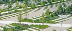 Landscaping, Walkways and Open Space in Commercial Parking Lot Design -
