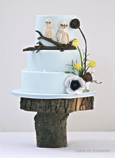Beautiful Cake Pictures: Cute Twin Owls Blue Cake on Rustic Wood Pedestal - Birthday Cake, Blue Cakes - Cupcakes, Cupcake Cakes, Beautiful Cake Pictures, Beautiful Cakes, Amazing Cakes, Owl Wedding, Blue Wedding, Wedding Ideas, Forest Wedding