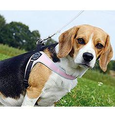 Tre Ponti Fibbia Small Dog Mesh Harness