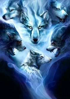 my wolf spirit tells me were to go and what to do. everyone has a little wolf spirit Anime Wolf, Wolf Love, Wolf Spirit, My Spirit Animal, Wolf Tattoos, Beautiful Creatures, Animals Beautiful, Tier Wolf, Fantasy Wolf