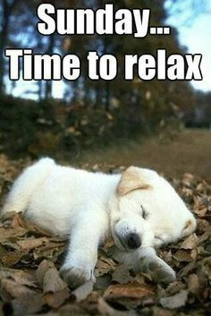 Sunday... Time to relax :)